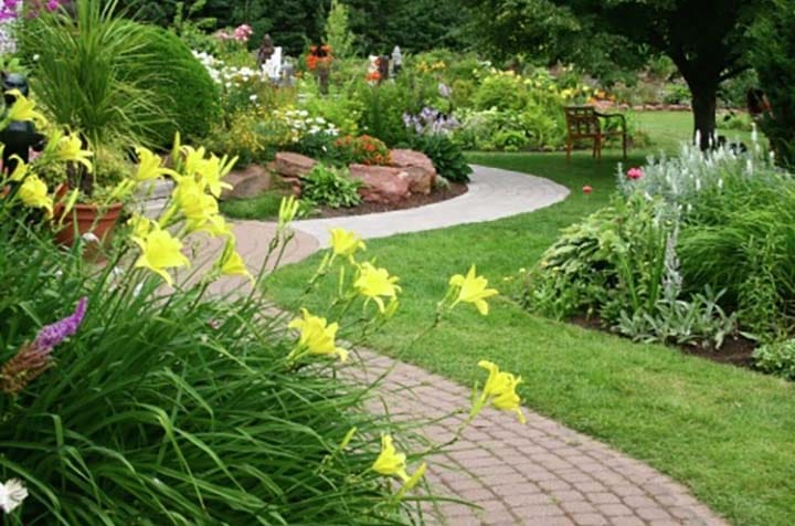 A Winding pathway with bright yellow flowers in the foreground